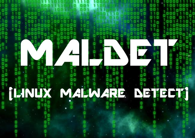 how to detect malware in network